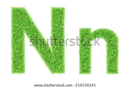 green grass alphabet isolated on white background, green moss alphabet, N