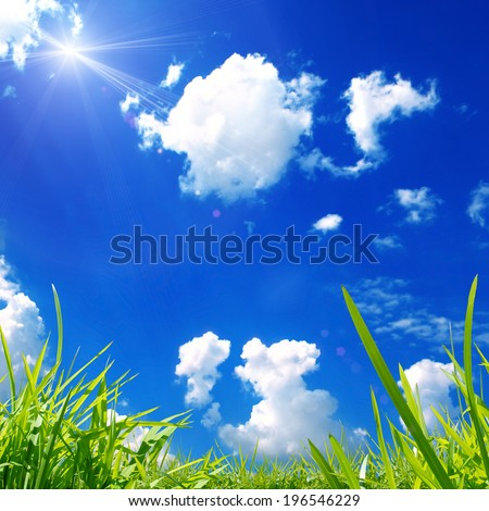 Green grass and blue skies nature background in summer - stock photo