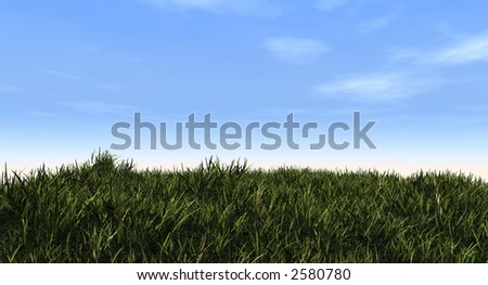 Green grass and blue sky - 3d scene.