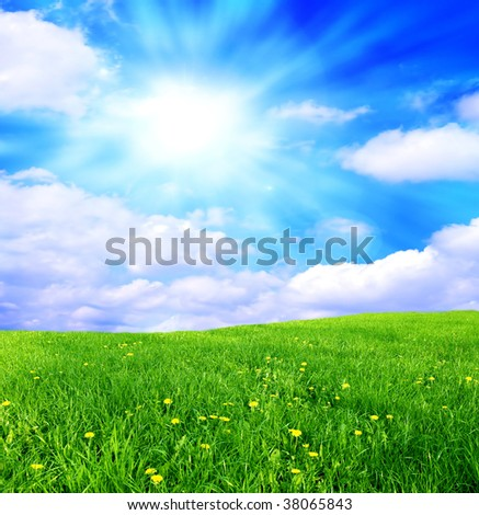 Green grass and blue sky landscape