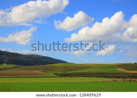 Green grass and blue sky. Very simple country landscape. - stock photo