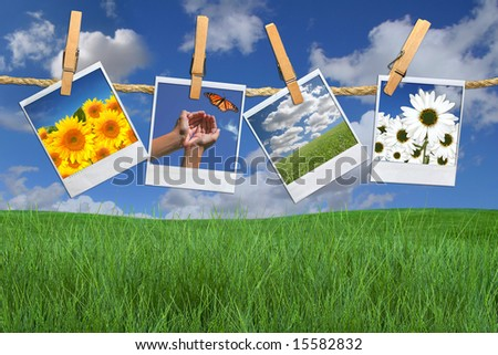 Green Grass and Blue Sky With Hanging Photos of Flowers - stock photo
