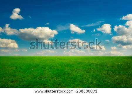Green grass and blue sky with white clouds - stock photo