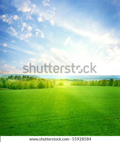 green grass and blue sunny sky - stock photo