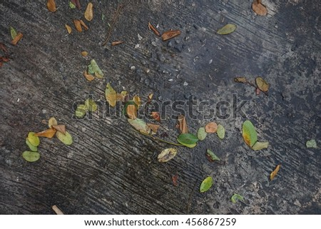 Green grass and cement background texture. - stock photo