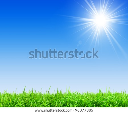 Green grass and clear blue sky - stock photo