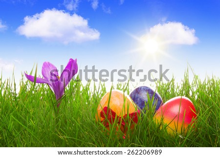 Green grass and colorful easter eggs.