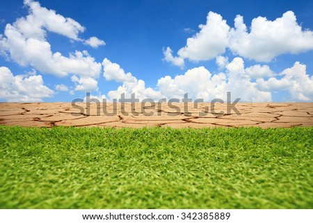 Green grass and cracked dry desert sand. - stock photo