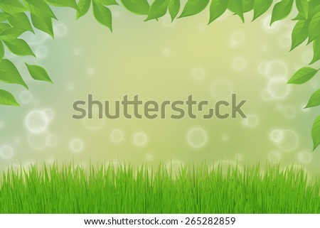 Green grass and green leafs - stock photo