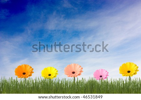 Green grass and multicolored flowers on a clouds background - stock photo