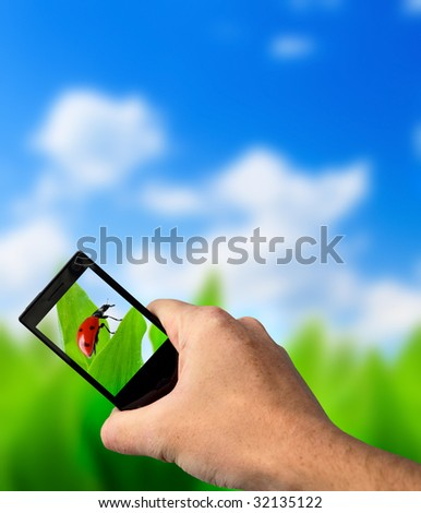 green grass and perfect day - stock photo