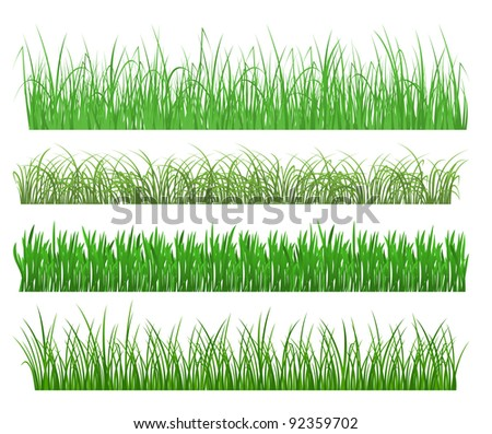 Green grass and plant elements isolated on white background. Vector version also available in gallery