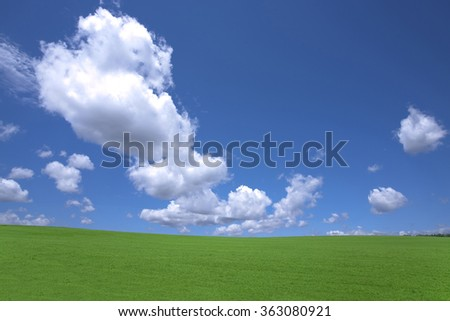 Green grass and sky