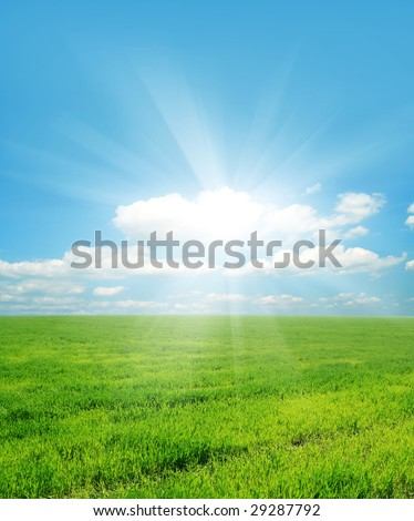 green grass and sun sky