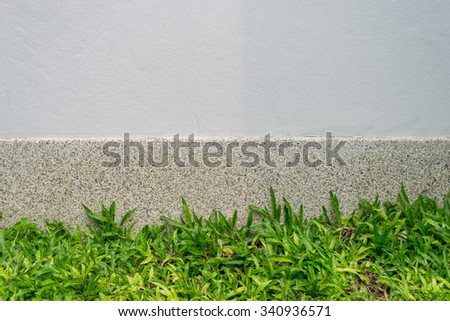 Green grass and wall  - stock photo