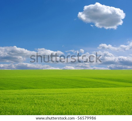 Green grass and white clouds