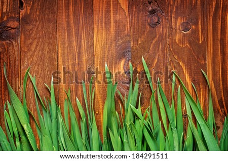 green grass and wooden boards - stock photo
