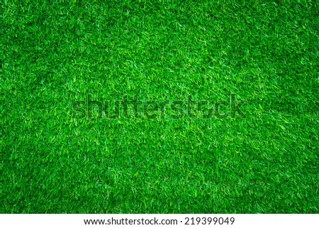 Green grass background - stock photo