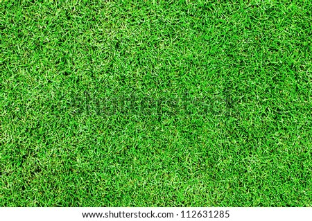 Green grass background (Soccer/Football field set) - stock photo