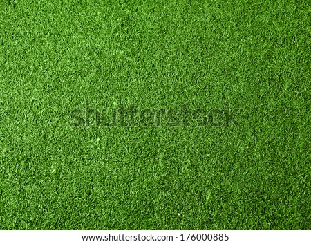 Green grass background. Top view - stock photo