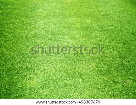 Green grass background turf grass surface abstract - stock photo
