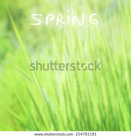 Green grass background with text space, grunge style photo, fine art, soft focus, beautiful fresh field, sunny day, fresh spring nature concept  - stock photo
