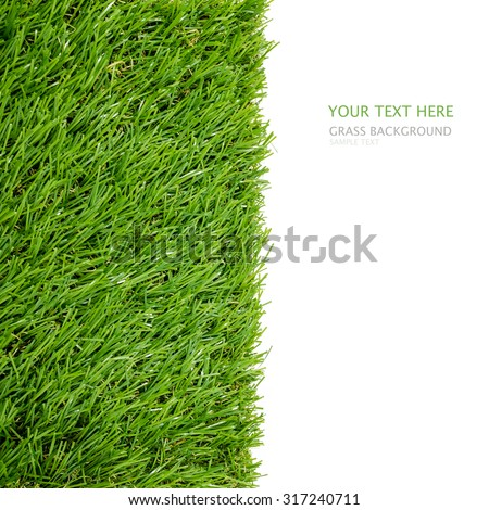 Green grass background with white area for copy space. - stock photo