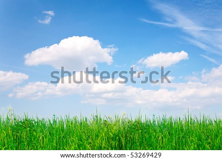 Green grass, blue sky - stock photo