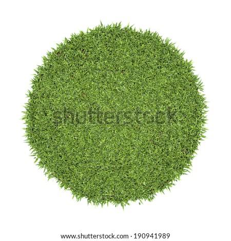 Green grass circle background - stock photo