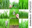 Green grass collection. Detail of a One Hundred Dollar Bill Through a Magnifying Glass. - stock photo