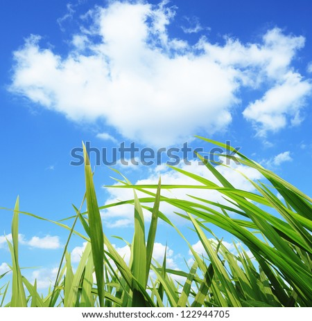 green grass,environmental protection concept - stock photo