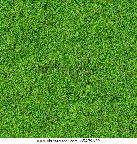 green grass field background - stock photo