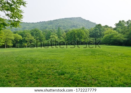 green grass field in  city park  - stock photo