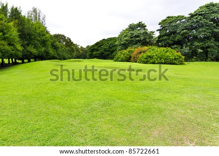 green grass field in the park - stock photo