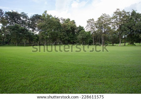 green grass field of golf course - stock photo