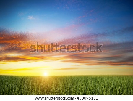 Green grass field under colorful sunset sky. 3D rendering