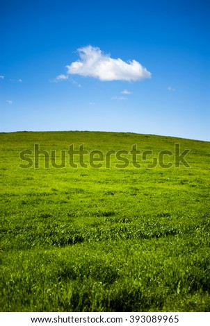Green grass field with white clouds on blue sky