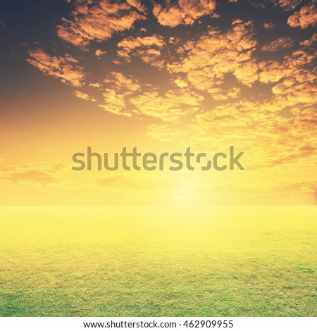 Green Grass fields and sunset for background.Vintage Tone