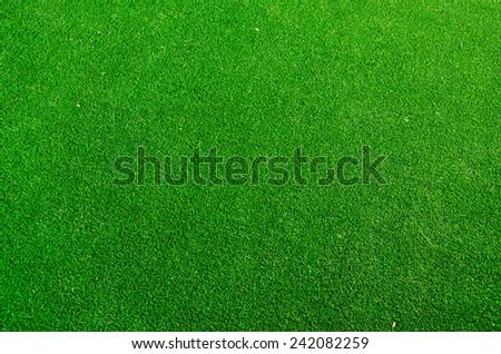 green grass floor texture background - stock photo