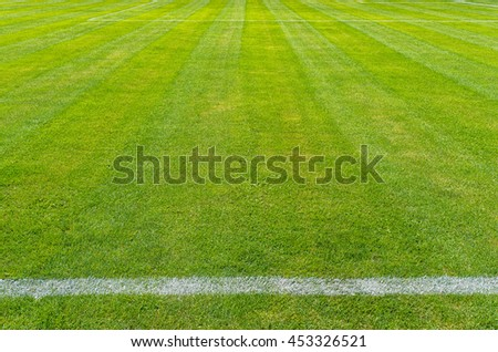 green grass football field, soccer field, team sport texture, pattern for designers
