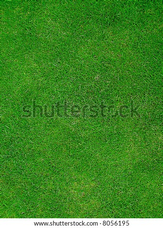 Green Grass giving a sports pitch field - stock photo