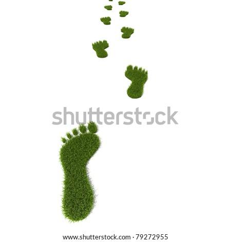 Green grass growing footprints - stock photo