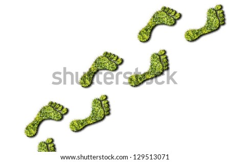 Green grass growing footprints on  white background - stock photo