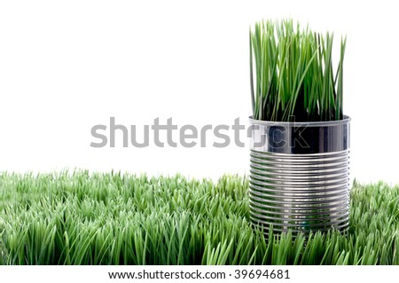 Green grass growing from a recycled aluminum can on grass - stock photo