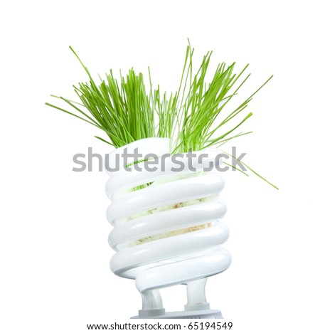 Green grass growing from lamp isolated on white background - stock photo