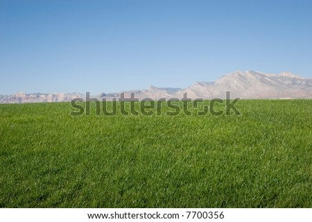 Green grass hills and blue sky - stock photo