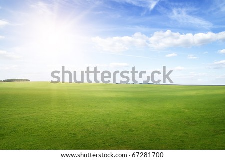 Green grass hills under midday sun in blue sky. Forest in the distance. - stock photo