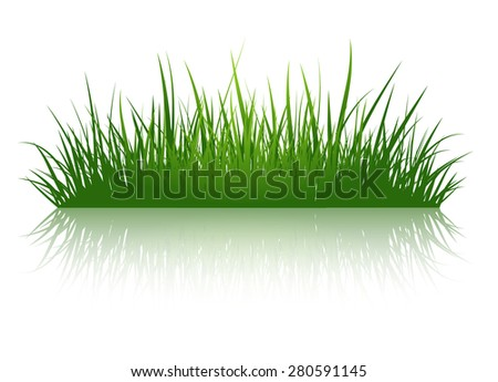 Green Grass Illustration Over White Background - stock photo
