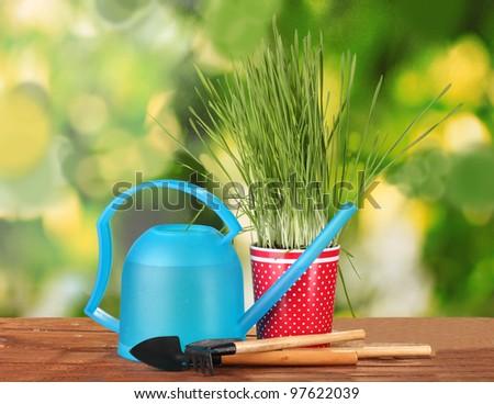 Green grass in a flowerpot on green background - stock photo