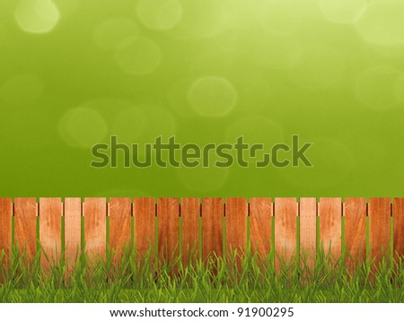 Green grass in garden with fence - stock photo
